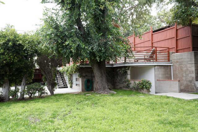 HIp n Trendy Palms Tree-House
